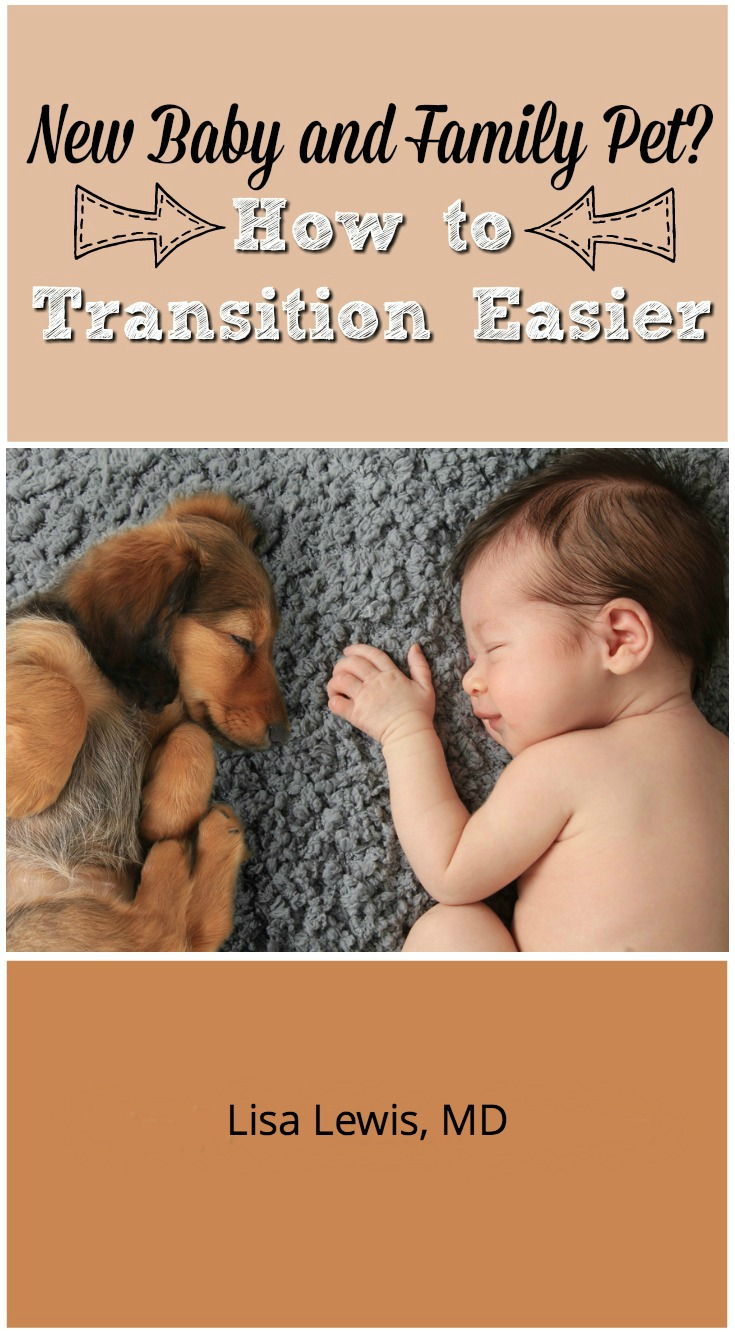 A beloved family pet can adjust to a new human family member. Follow these steps to ensure an easier transition for your pet and new baby.