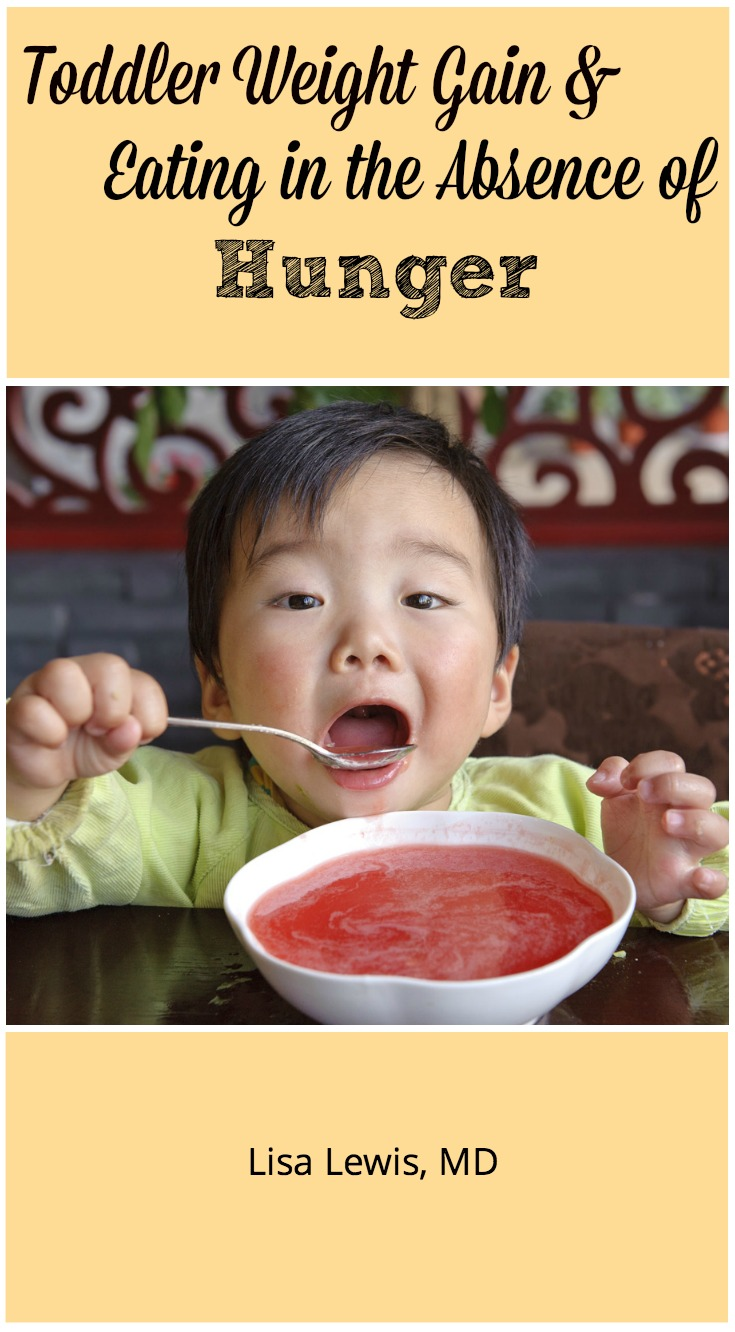 The American Academy of Pediatrics published an article May 2016 showing that eating without hunger increases toddler weight gain. Here's how to help.